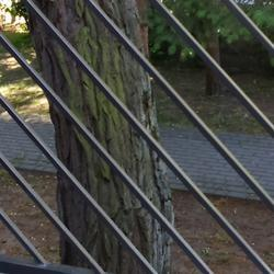 Balustrady-schody-104