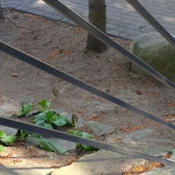 Balustrady-schody-106