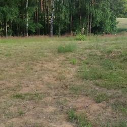 Bramyi-ogrodzenia-82